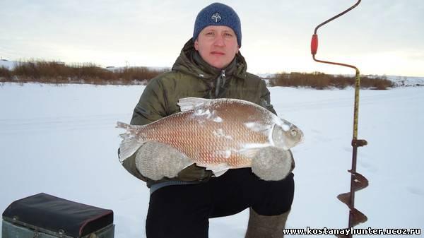 рыбалка леща на тоболе