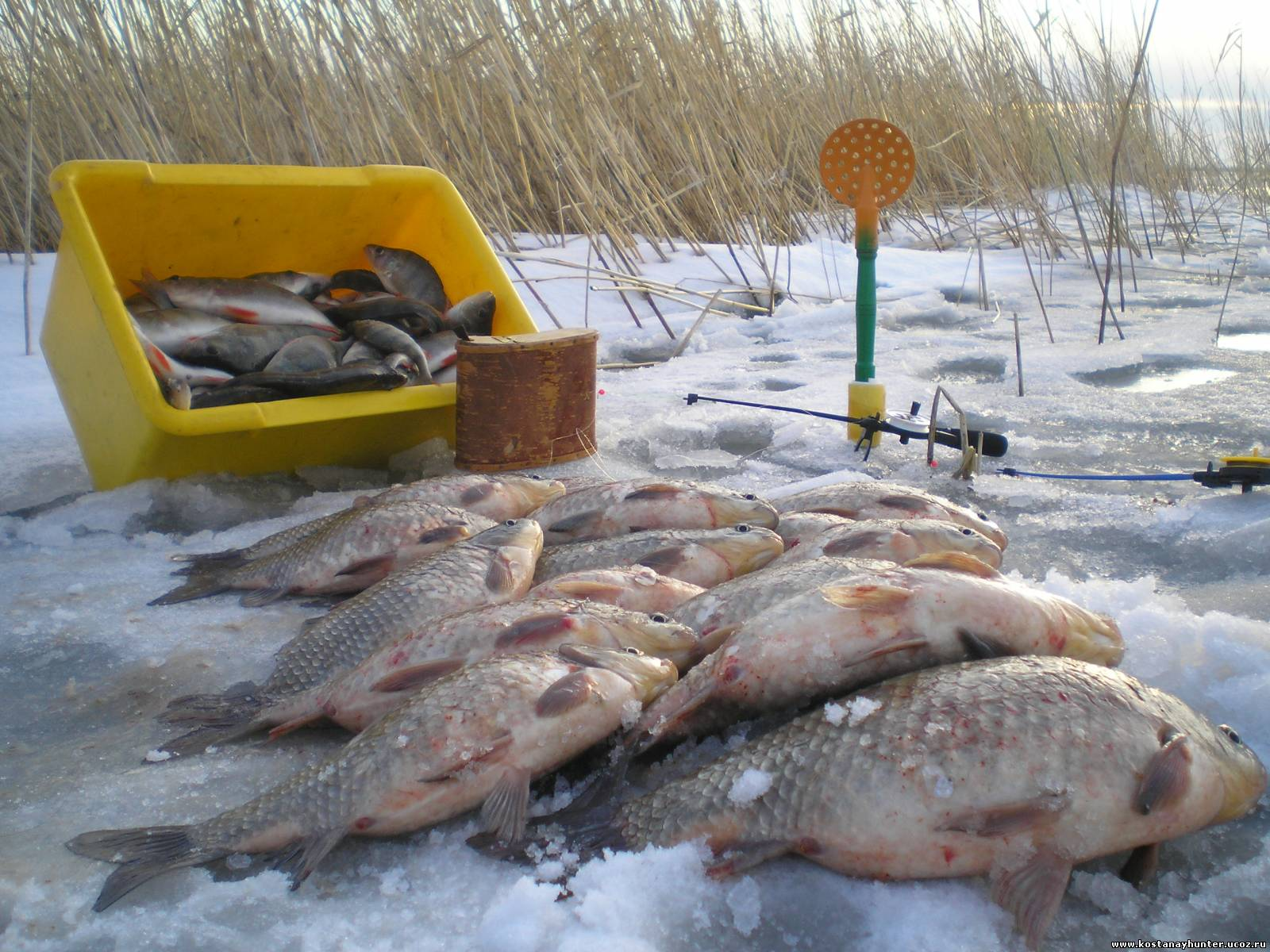 ловля рыбы не сибирских озерах