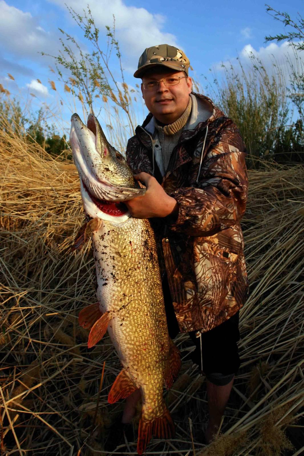 сроки запрета на рыбалку в 2017 году в костанайской области